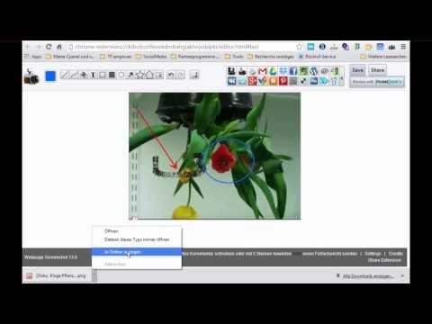 Bilder erstellen mit dem Google Chrome Plugin - Webseiten Screenshot oder Webpage Screenshot